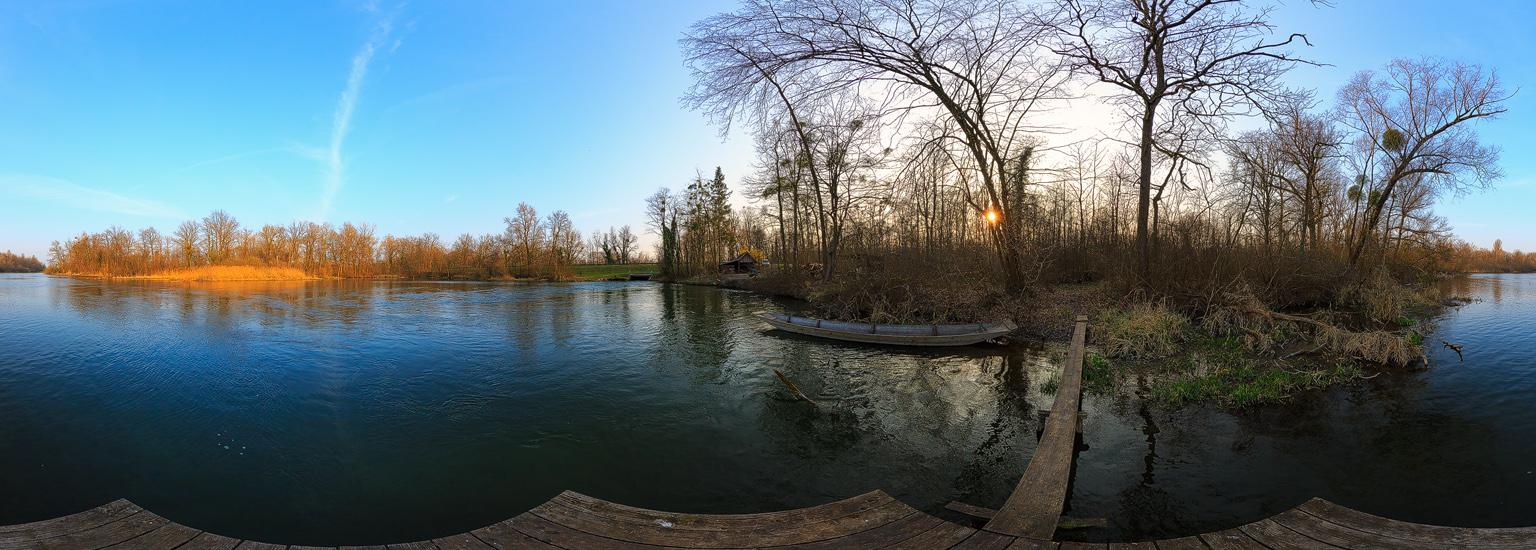 Am Altrhein bei Neuried/Ichenheim